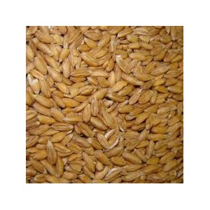 FARINE EPEAUTRE T100/1KG MOULIN BIO
