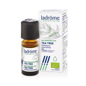 HUILE ESSENTIELLE TEA TREE 10ML BIO